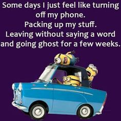 Going ghost for a few weeks (or months). Minion S, Cute Minions, Minion Jokes, Minions Quotes, Sister Quotes, Crazy Girls, For Facebook, Funny Signs, Haha Funny