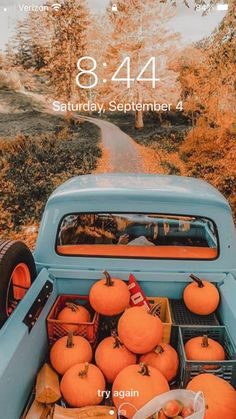 Fall phone ideas