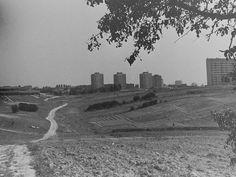 [Lublin] Stare widoki, fotki, ryciny, plany - Page 432 - SkyscraperCity
