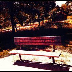 #bench #farm