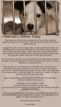 they rescue us!