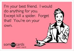 I'm your best friend. I would do anything for you. Except kill a spider. Forget that! You're on your own. | Friendship Ecard | someecards.com