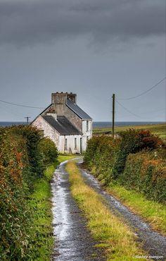 Irish Landscape, Landscape Photos, Landscape Paintings, Landscape Photography, Ireland Landscape, La Provence France, Ireland Homes, English Countryside, Ireland Travel