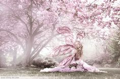 Cherry Blossom Fairy - Photography: Viona ielegems - Model and costume: Jolien Roseanne - Post Production: Chester Van Bommel