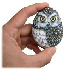 Image result for owl rock
