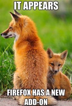 Firefox - www.meme-lol.com