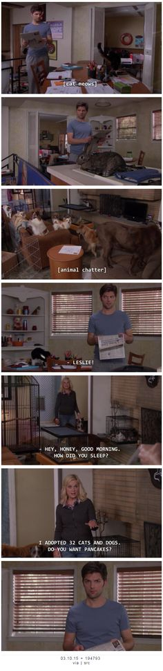 I adopted 32 cats and dogs. Do you want pancakes? | parks and rec | I am probably going to need to link this to any online dating profile I create