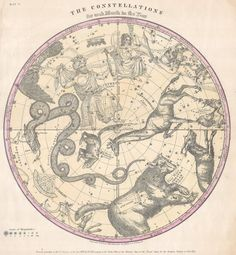 Learn more basic constellations. The Constellations for Each Month of the Year - Atlas of the Heavens, Elijah Burritt Constellation Chart, Constellation Tattoos, Vintage Wall Art, Vintage Prints, Illustrations Harry Potter, Celestial Map, Theme Harry Potter, Star Chart, Zodiac Constellations