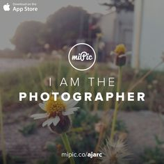 Check out my #miPic gallery and own my pics as awesome products! via @mipic_app Mobile Photography, Wild Flowers, Cool Art, Presentation, App, Gallery, Awesome, Check, Artist