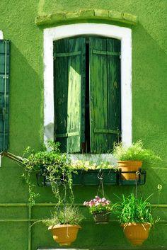 verde---➽viridi➽πράσινος➽green ➽verde➽grün➽綠➽أخضر ➽зеленый World Of Color, Color Of Life, Color Of The Year, Green Windows, Windows And Doors, Green Shutters, Window Shutters, Window Boxes, Green Walls