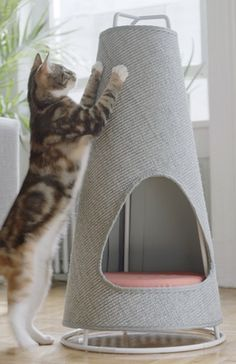 Products We Love: This Cat Scratching Post That Doubles as a Bed http://www.petful.com/buzz/cat-scratching-post-that-is-also-a-bed/