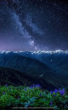 Milky Way over the Olympics, Hurricane Ridge, WA .. Brian and i will deff be going to hurricane ridge this summer to see this!