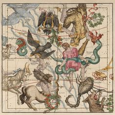 Celestial Map,Constellation map 17th century, Hercules, Sagittarius. Heavens map, Zodiac print, Antique celestial map, Astrology print.