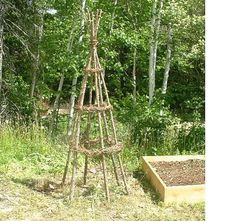 How to Make a Rustic Garden Trellis with Cedar and Grapevine