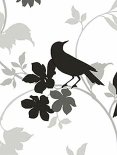 Amazon.com - birds Wallpaper Pattern #9X89G8RGW