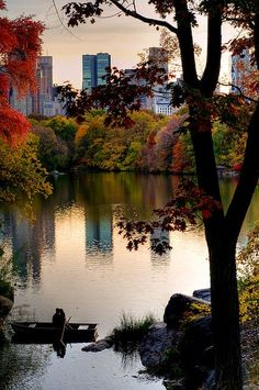 View from Central Park in the fall. I.MUST.GO. I could cry seeing how beautiful this photo is!