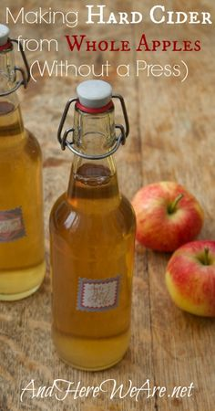 Making Hard Cider from Whole Apples, Without a Press | And Here We Are... #homebrewing #cider #apples #beverages #fall #autumn #foraging