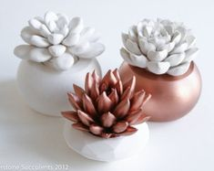 Copper Set of 3 Succulents in Round Containers, Tabletop, Desktop, Modern, Home and Office Decor