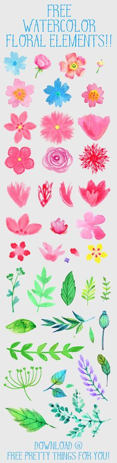 Free Watercolor Flower ClipArt - Free Pretty Things For You