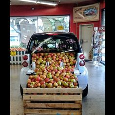 Instagram photo by @perfectpicsbymc #smartcar #fortwo #apples