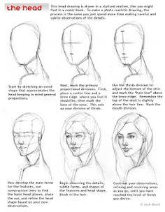 Drawsh: Head Drawing Step by Step