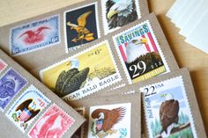 Bald Eagle Stationery Eagle Scout Stationery by EdelweissPost, $29.00