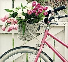 pink bike and basket full of flowers