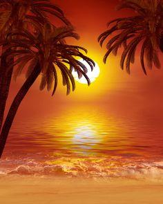 Gündoğumu ve günbatımı   49