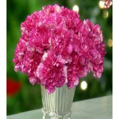 Carnations flowers for Mother's Day. Order these lovely one dozen of Pink Carnations with vase for your grandmother. Fake Flowers, Pretty Flowers, Silk Flowers, Inexpensive Dresses, Online Flower Shop, Create A Fairy, Fancy Cupcakes, Paper Streamers, Pink Carnations