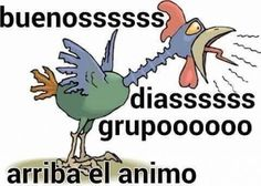 Good Morning In Spanish, Good Morning Funny, Good Morning Good Night, Good Morning Wishes, Good Morning Quotes, Funny Phrases, Funny Quotes, Funny Memes, Memes Humor