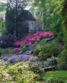 The English Garden - large patches of monochromatic flowers  Love the Big Bold Colors!!! WOW would a yard like this be a dream #englishgardens