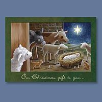 Animals & Manger Christmas Cards