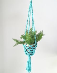 Crochet a Plant Hanger with T-Shirt Yarn!   Vickie Howell