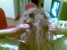 Worst Hair Extension Videos - http://www.trend-hairstyles.com/celebrity-hairstyle/worst-hair-extension-videos.html