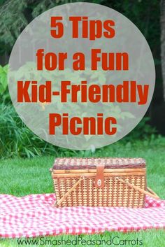 5 Tips for a Kid Friendly Picnic. These are great ideas for little ones! // Smashed Peas and Carrots.com