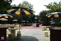 Enjoy the atmosphere of Tokyo Disneyland for free! Have a picnic here.