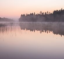 Misty dawn at a lake by Susanna Hietanen Finland Misty Dawn, Finland, Sunrise, Peach, Colour, Landscape, Color, Scenery, Peaches