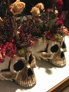 BLOOMING SKULL HEADS Halloween Projects, Halloween Diy, Halloween Decorations, Halloween Floral Arrangements, Halloween Clearance, Pumpkin Carving Kits, Halloween Flowers, Floral Skull, Flower Branch