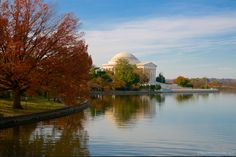 Reflections: The Thomas Jefferson Memorial