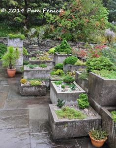 Alpines in rustic troughs, Wave Hill. Visit to Wave Hill in New York City, Part 2 | Digging