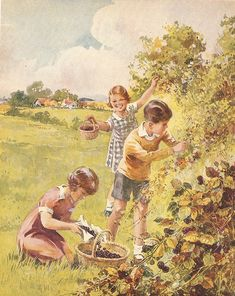 """Berry picking -- """"Warne's Book of the Country"""", Frederick Warne & Co., Illustrated by B. Butler"""