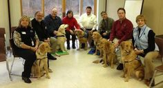 Dog bless this golden team of love. These K-9 Parish Comfort Dogs traveled 800 miles to offer support to Newtown residents after the school tragedy.