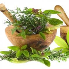 Creating a Healing Garden – 9 Healing Herbs You Can Grow Yourself « Dr Akilah El – Celestial Healing Wellness Center
