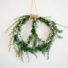 Peace in a peaceful way a plant and I find such peace in plants so I think that this is for me! Thank you sweet Ashlie Terry for this wonderful Peace Sign! Christmas Time, Christmas Wreaths, Christmas Decorations, Xmas, Easter Wreaths, Christmas 2017, Peace Sign Art, Peace Signs, Bohemian Christmas