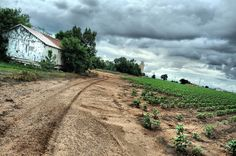Texas Landscape Dirt Road Ranch Gate Posts Trees Clouds