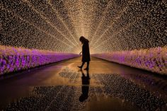 In winter in Japan, the event of illumination begins in various places. Among them, the light tunnel of Nana - no - Sato is particularly popular and attracts people.