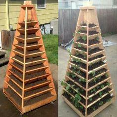 Upwards gardening
