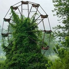Locals in West Virginia claim this Ferris wheel at the abandoned Lake Shawnee Amusement Park is haunted Abandoned Cities, Abandoned Amusement Parks, Abandoned Mansions, Lake Shawnee Amusement Park, Cool Pictures, Cool Photos, Old Churches, Formal Gardens, Wild Nature