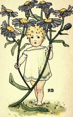 Michaelmas Daisy - Victorian Baby with Blue Daisies
