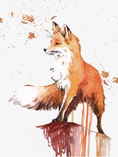 zeichnen aquarell fuchs malen drawing watercolor paint fox Related posts: Fox Say What? Art And Illustration, Fuchs Illustration, Illustrations, Watercolor Illustration, Painting & Drawing, Watercolor Paintings, Fox Painting, Fox Drawing, Watercolours